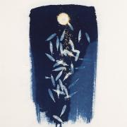 pirjolempea-rajkastaataiei-0098