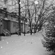 pirjolempea-talvi-08