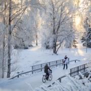 pirjolempea-talvi-02