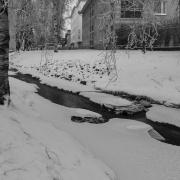 pirjolempea-talvi-07