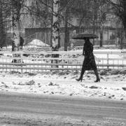 pirjolempea-talvi-09